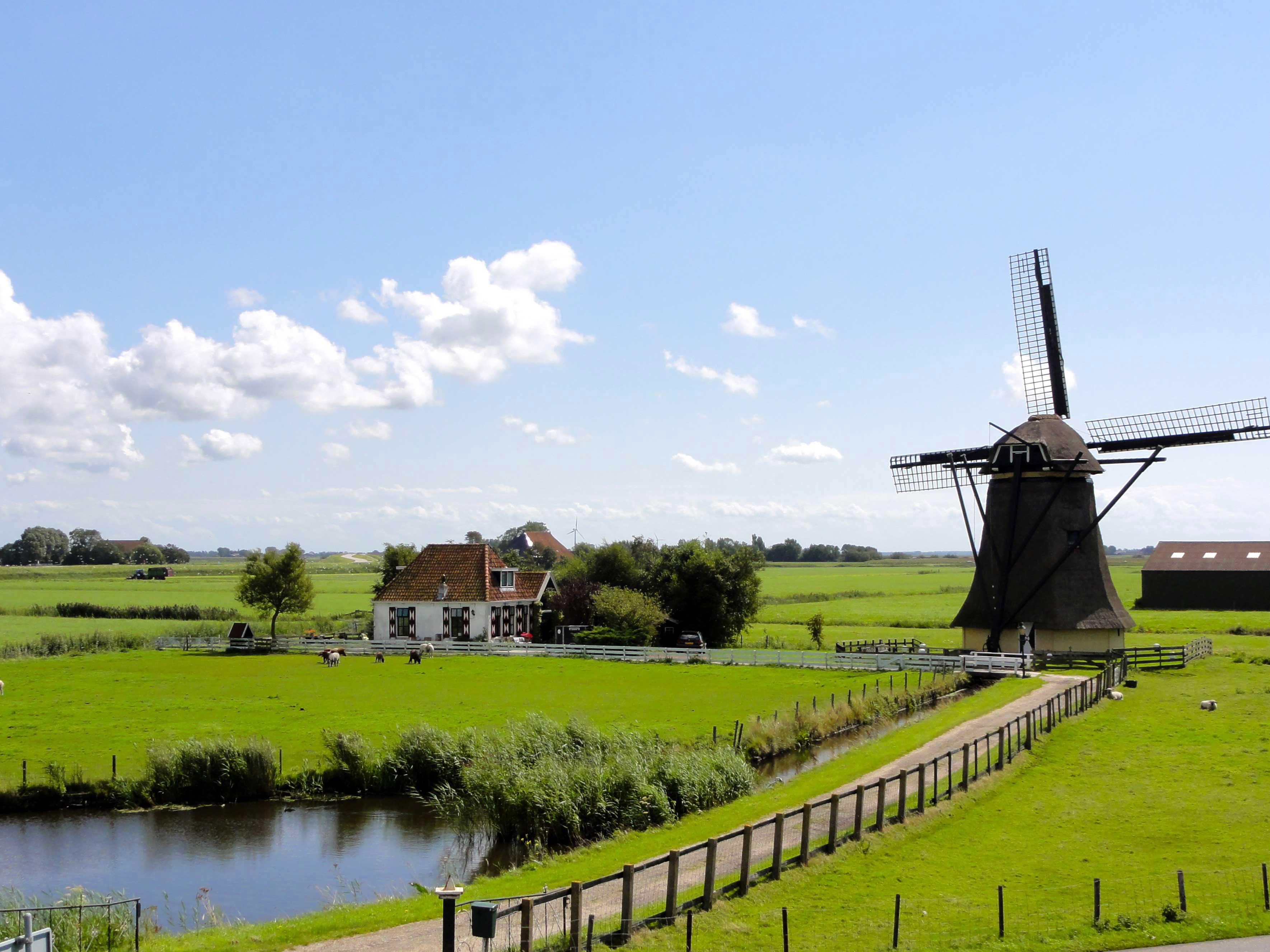 friesland-landscape-in-the-netherlands